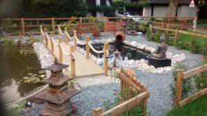 Pond Contractor