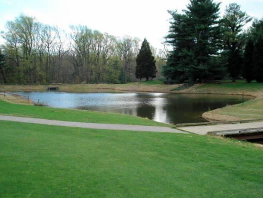 Essex aquatics golf course pond 1 for Diy large pond