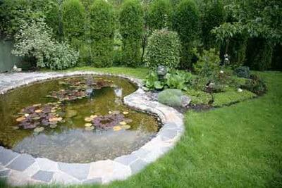 garden pond build